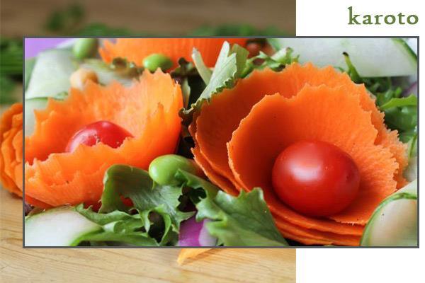تراش سبزیجات 2 کاره پوست کن و حلقه کن
